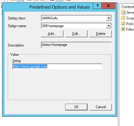 DHCP Options Screenshot 2
