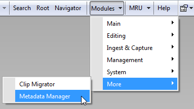 Metadata manager_window