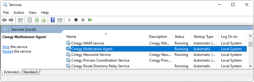 multiviewer_agent_windows_service